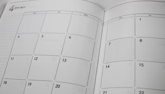 サイバーコネクトツー デイリープランナー monthly
